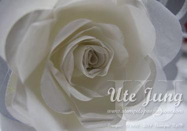 Weiße Rose am Serviettenring