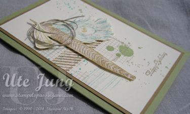 Fine Feathers Geburtstagskarte