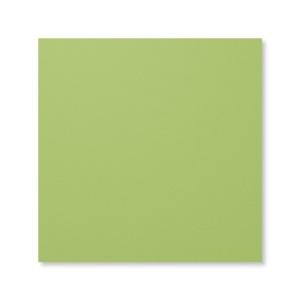 """131196 Farbkarton 12"""" x 12"""" (30,5 x 30,5 cm) Farngrün. Statt 7,25 € jetzt 5,44 €"""