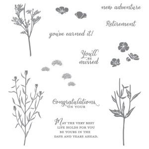 138728 Stempelset Klarsicht Wild About Flowers Englisch. Statt 25,00 € jetzt 18,75 €