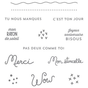 141115 Stempelset Transparent Transparent Souhaits rayonnants Französisch. Statt 22,00 € jetzt 16,50 €