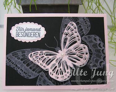 """Schmetterling """"Swallowtail"""" auf Tafel-Papier"""
