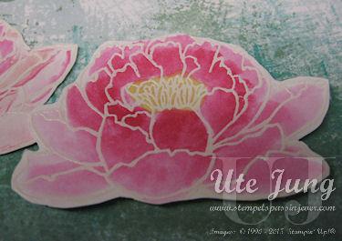 Seerosenblüte mit weiß embosst und mit Aquapainter ausgemalt
