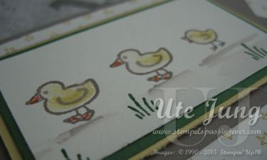 """Babykarte mit dem Stempelset """"Tierische Grüße"""""""
