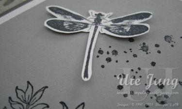 Die Libelle aus diesem Stempelset finde ich besonders toll.
